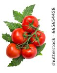 Ripe Tomatoes With Branches An...