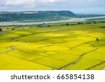 rice field of lotus valley in... | Shutterstock . vector #665854138