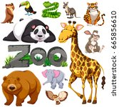 zoo animal collection | Shutterstock .eps vector #665856610