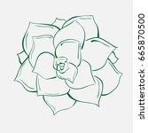 illustration  hand drawn  of a  ... | Shutterstock . vector #665870500