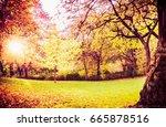 autumn park landscape with lawn ...   Shutterstock . vector #665878516