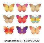 butterflies of different colors   Shutterstock .eps vector #665912929