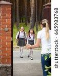two happy cheerful girls... | Shutterstock . vector #665983768