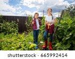 beautiful teenage girls working ... | Shutterstock . vector #665992414