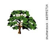 oak | Shutterstock .eps vector #665992714