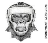 Gorilla  Monkey  Ape Wild Boxe...