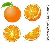 collection of whole and sliced...   Shutterstock .eps vector #666085849
