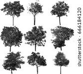 collection of isolated tree ob... | Shutterstock . vector #666184120