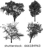 collection of isolated tree ob... | Shutterstock . vector #666184963