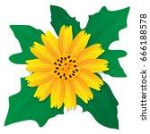 golden button flowers isolated... | Shutterstock .eps vector #666188578