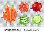 aloe juice  carrots  grapefruit ... | Shutterstock .eps vector #666333673