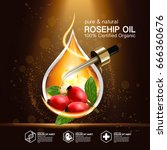 rose hip oil natural cosmetic... | Shutterstock .eps vector #666360676
