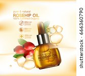 rose hip oil natural cosmetic... | Shutterstock .eps vector #666360790