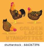 Chicken Golden Laced Wyandottes ...