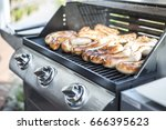 barbecue grill bbq on propane... | Shutterstock . vector #666395623