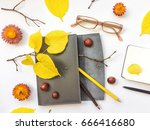 closeup of leather pen case ... | Shutterstock . vector #666416680