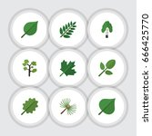 flat icon natural set of... | Shutterstock .eps vector #666425770
