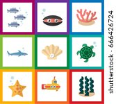 flat icon nature set of conch ... | Shutterstock .eps vector #666426724
