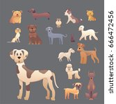 group of purebred dogs.... | Shutterstock .eps vector #666472456