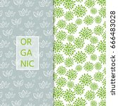 two  fresh pattern with... | Shutterstock .eps vector #666483028