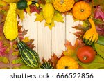 colorful autumnal leaves and... | Shutterstock . vector #666522856
