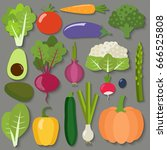 set of fresh healthy vegetables.... | Shutterstock .eps vector #666525808