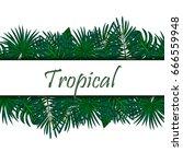 plants of the jungle. wild....   Shutterstock .eps vector #666559948