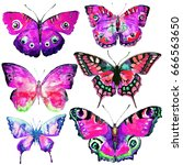 beautiful pink butterflies... | Shutterstock . vector #666563650