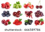 fruits. collection of berries... | Shutterstock . vector #666589786