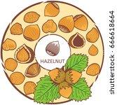 hazelnut label. vector color...   Shutterstock .eps vector #666618664