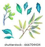 watercolor illustration  green... | Shutterstock . vector #666704434