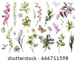 big set watercolor elements  ... | Shutterstock . vector #666711598