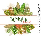 tropical summer pattern with...   Shutterstock .eps vector #666746029
