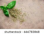 basil | Shutterstock . vector #666783868