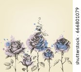 floral border made of roses... | Shutterstock .eps vector #666801079