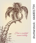 twisted palm tree  summer... | Shutterstock .eps vector #666801754