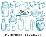 dairy products vector... | Shutterstock .eps vector #666826894