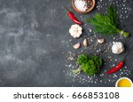 herbs and spices cooking on... | Shutterstock . vector #666853108