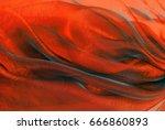 closeup of the wavy organza... | Shutterstock . vector #666860893