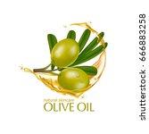 olive oil organics natural skin ... | Shutterstock .eps vector #666883258