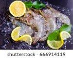 close up offresh shrimp on ice... | Shutterstock . vector #666914119