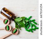 medicine herb. herbal pills...   Shutterstock . vector #667014154