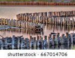 ecological bank protection of...   Shutterstock . vector #667014706