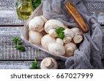 raw fresh mushroom in basket.... | Shutterstock . vector #667027999