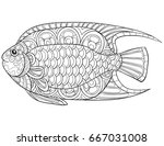 adult coloring page book a fish.... | Shutterstock .eps vector #667031008
