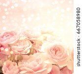 roses background | Shutterstock . vector #667058980