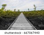 journey forward long wooden... | Shutterstock . vector #667067440