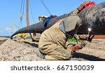 welder on the pipeline repairs | Shutterstock . vector #667150039