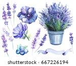 a set of elements  anemones ...   Shutterstock . vector #667226194