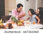 an attractive happy  smiling... | Shutterstock . vector #667261060